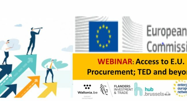 Webinar: Access to E.U. procurement; TED and beyond